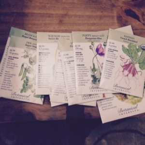 Our selection of various seeds.